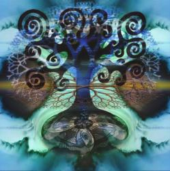 Arbe fractal