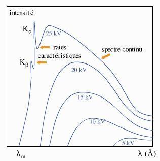 Schéma du spectre du molybdène en fonction de la tension appliquée V