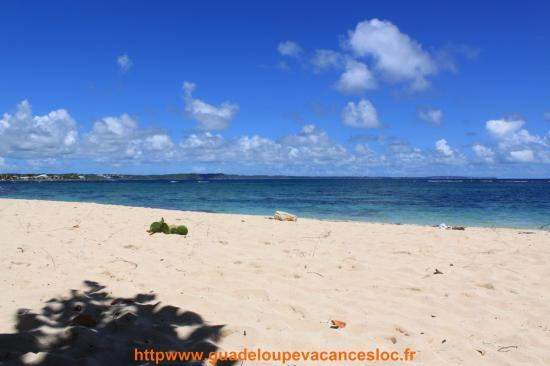 Plage du Moule,Guadeloupe
