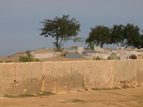 mur mûr