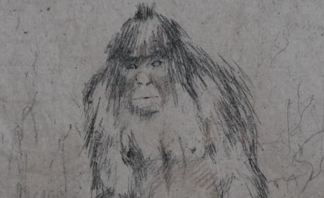 Cryptozoologie yéti wildmen Almasty Wildmen Bigfoot sasquatch hominidé inconnu cryptide Igor Burtsev Russie chasseur création d'un institut empreintes Kemerovo cryptozoology Tachtagol Tashtagol