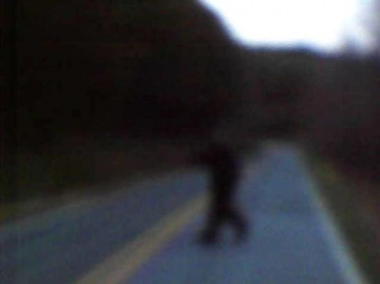 cryptozoologie cryptozoology Thom Byers James English Carolyn Wright bigfoot Or Church Road Rutherford Knobby sasquatch Usa united states of america cleveland amérique du nord hominidé vidéo photographie cryptide