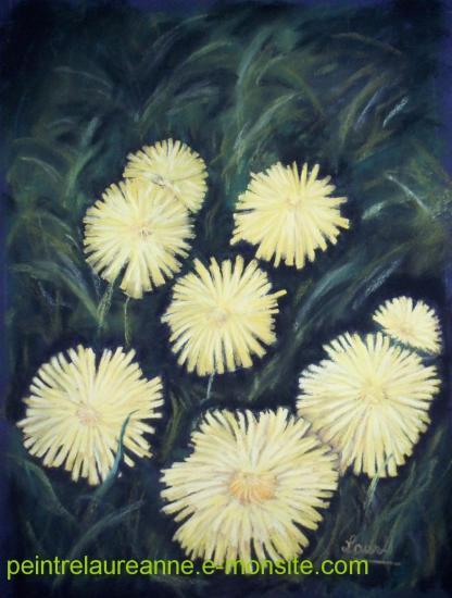 dessin au pastel sec fleur pissenlits