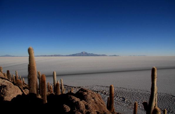 Vue sur le volcan Tunupa depuis l`île d'Incahuasi