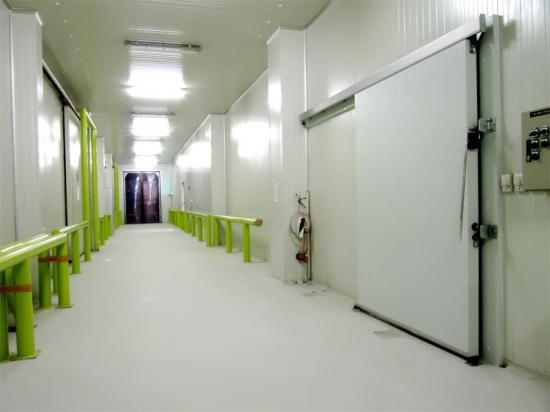 Porte de chambre froide n gative porte frigorifique - Chambre froide commercial ...