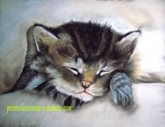 dessin au pastel sec animaux chaton