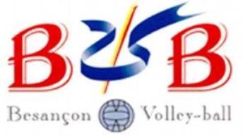 Logo du BVB