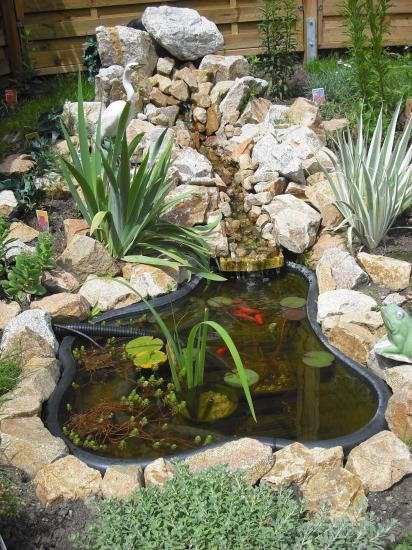 Creation for Construction d un bassin de jardin avec cascade