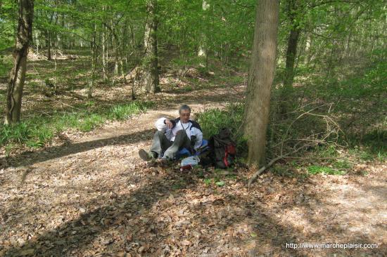 Serge en forêt de Carnelle