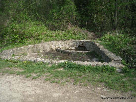 Source en forêt de Carnelle, près de l'étang Bleu