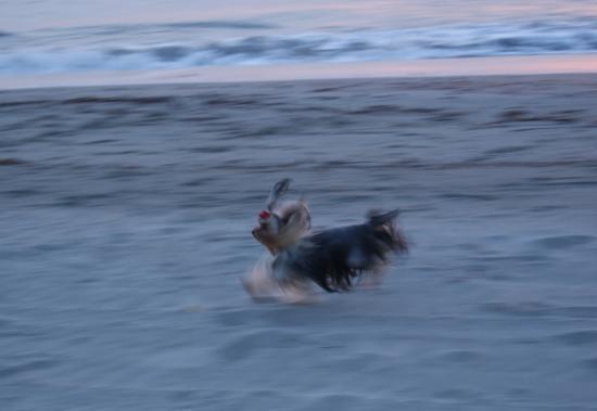 Elton John en pleine course sur la plage