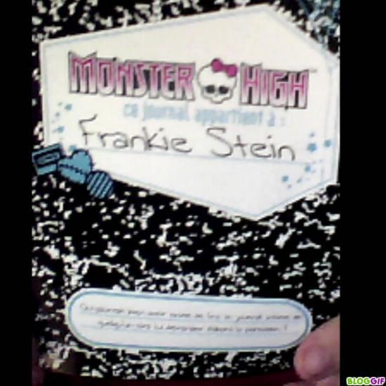 Journal Frankie stein