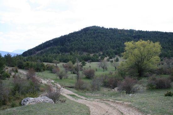 Plateau de Gisfort