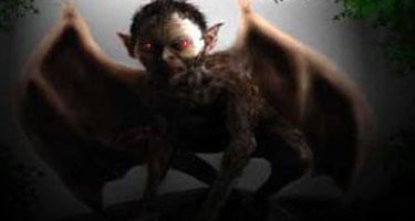 loup garou créature polymorphe terreur désert de Karaa afrique du sud south africa Steytlerville Zandisile Nelani métamorphose homme singe cochon chien chauve souris taille d'une vache mythe et légende avril 2011