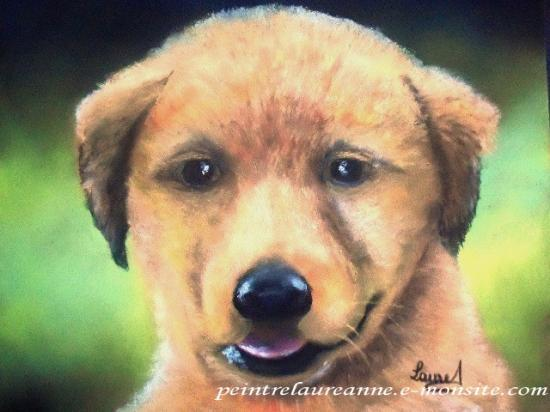 dessin au pastel sec animaux chien