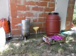 Distillation familiale d'eau de rose