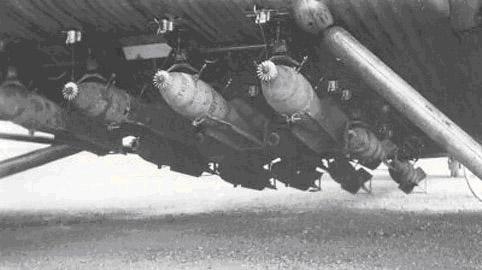 Toucan bombardier