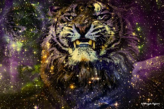 Galaxie du tigre
