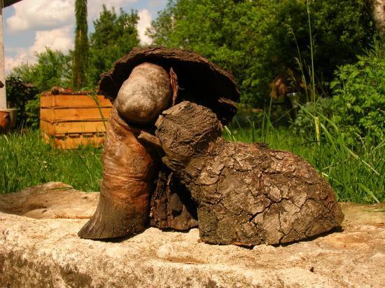 les artisans en bois