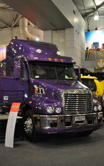 camion violet