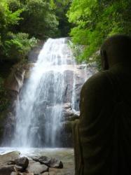 Bouddha veille... - Kure