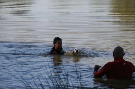 Un premier bain pour Cimba !