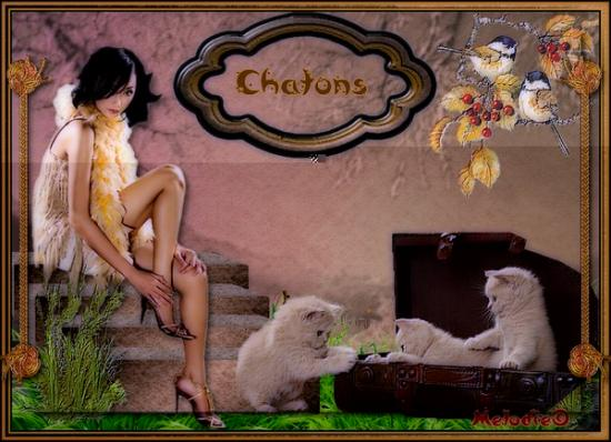 Chatons