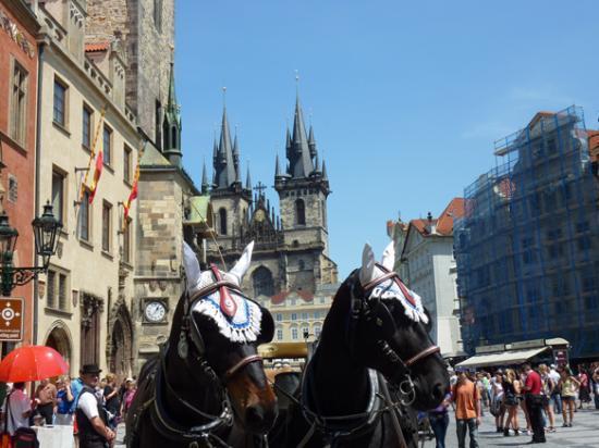 Prague @hellomisterd.com