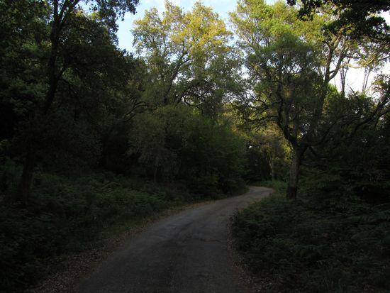 Route du Lambert