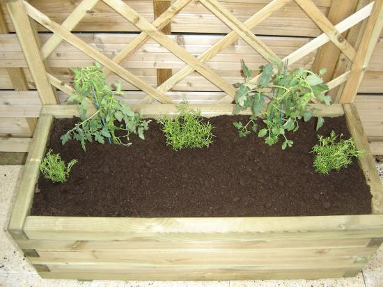 Jardiniere De Legumes