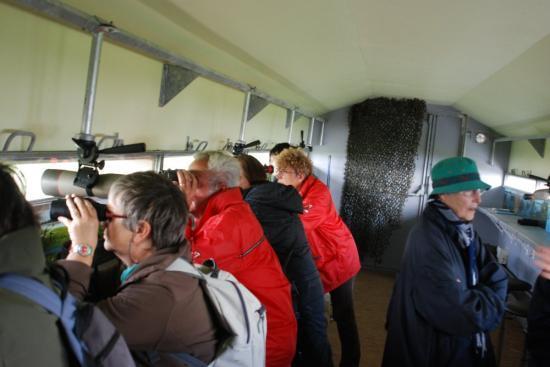 l'observatoire ornithologique