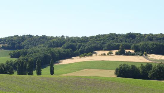 la campagne en Charente