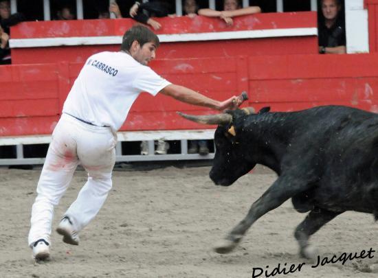 N° 643 se Fabre-Mailhan sur Maxime Carrasco