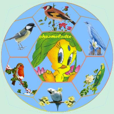 Ballon oiseaux