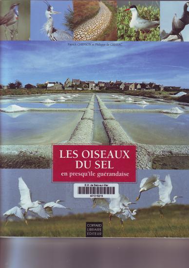Les oiseaux du sel en Presqu'île Guérandaise