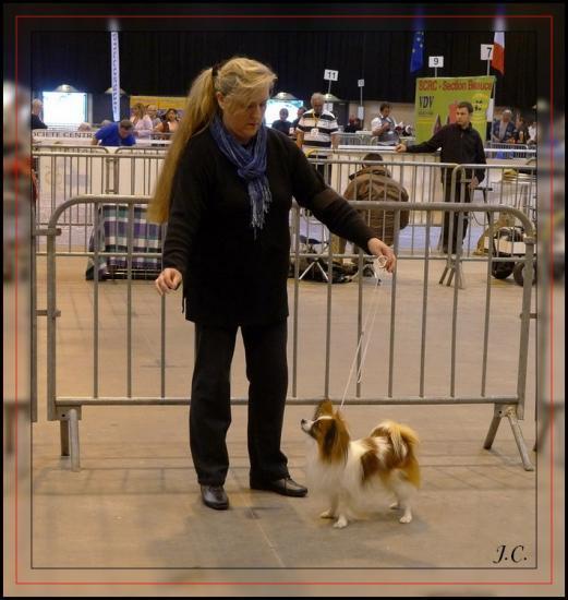 chopin dreux 2011