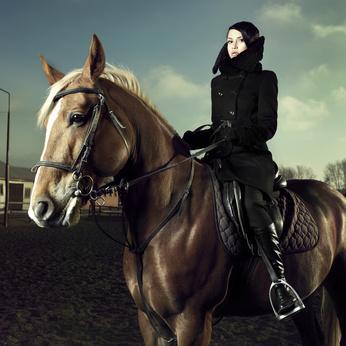 Faire du cheval en France