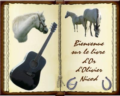 Livre_Or_Olivier