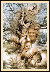 bel arbre d'amour