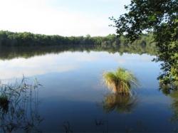 Calme plat sur la lagune