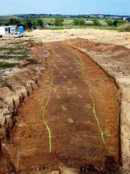 Vue générale en direction du nord-est de la plantation 1, au lieu-dit Al Ciurer de Banyuls-dels-Aspres. Les fosses de plantations, organisées en rangs réguliers, ont été en partie creusées dans le comblement sombre d'un ancien chemin creux attribué au second âge du Fer (époque gauloise). © J. Kotarba, Inrap