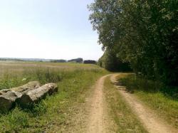 VRTR bois des Frappant,vers frontière