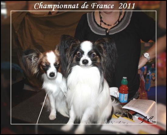 champ de france 2011