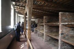 reconstitution des lits de Birkenau