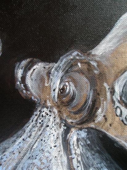 L'invention des planètes. Détail: l'oeil de la pieuvre. Acrylique sur lin de madrid. Format 60 x73. Juillet 2011.
