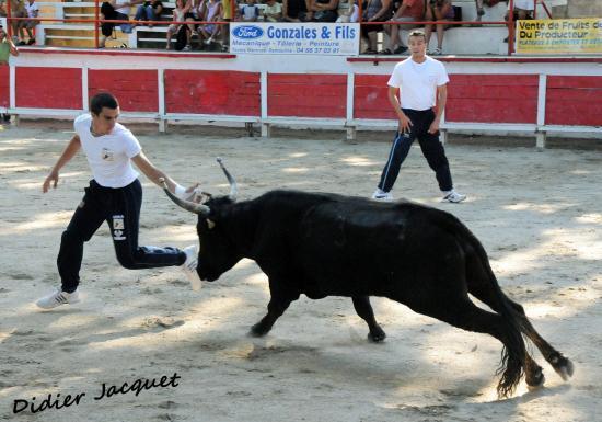N° 763 de Lautier sur David Guerrero