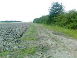 voie de Voncq,vers le Chesne,Beaufuy
