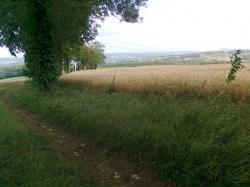 VRCK sort bois d Mellier/Charleville-Mèz