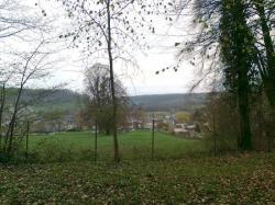 talus nord-est+butte nord/bois Belgique