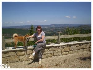 shiba inu Riku en Aveyron